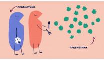 Пребиотики для кожи